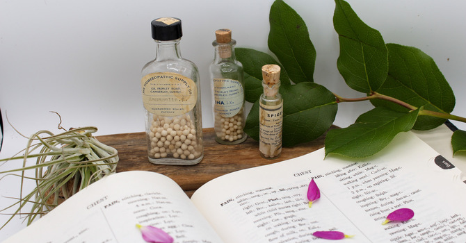 Homeopathic Consultations + Homeopathic Detox Therapy